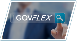 GovFlex Expert Search Engine